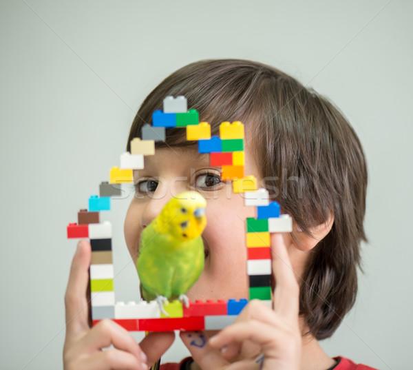 Criança jogar animal de estimação papagaio mãos pássaro Foto stock © zurijeta