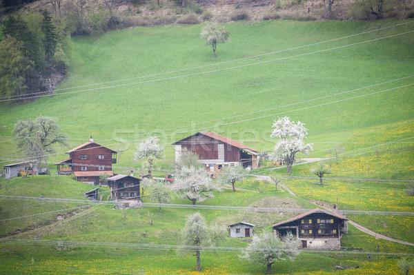 Szwajcaria domu budynku miasta lasu górskich Zdjęcia stock © zurijeta