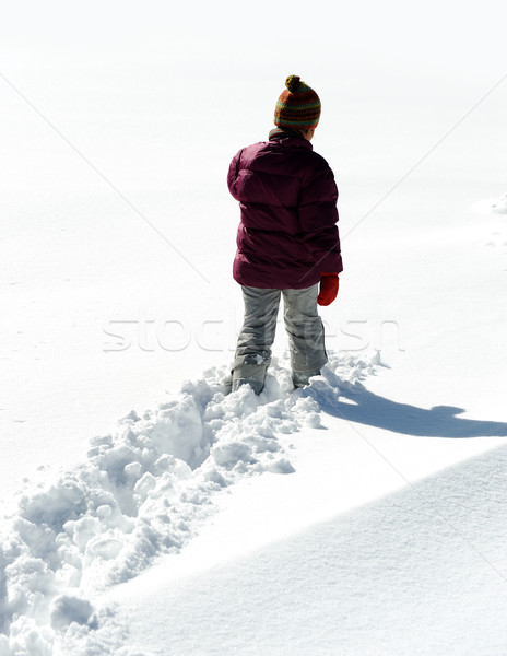 Walking in snow Stock photo © zurijeta