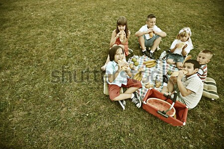 Vintage photo of a group of happy children on summer grass meado Stock photo © zurijeta