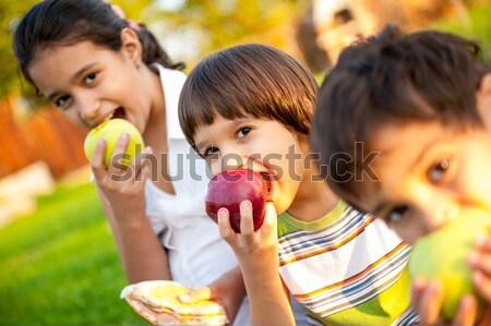 Pequeño grupo ninos comer manzanas junto Foto stock © zurijeta