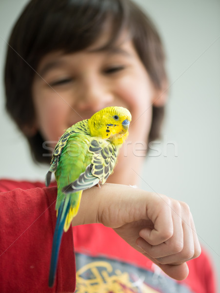 Kid playing with his pet parrot Stock photo © zurijeta