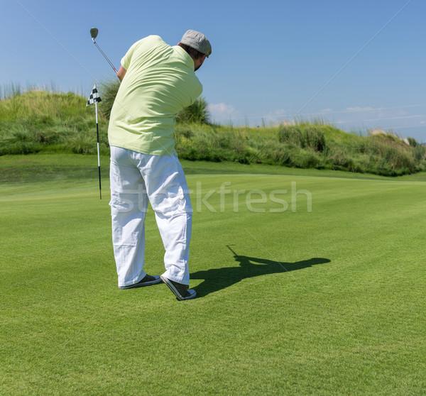 Uomo giocare golf club natura estate Foto d'archivio © zurijeta
