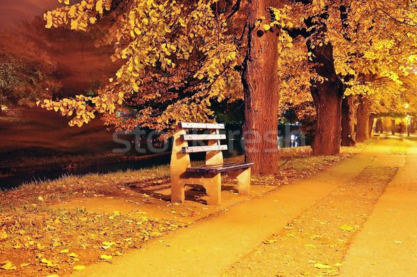 Fall scene, park, trees, alley Stock photo © zurijeta