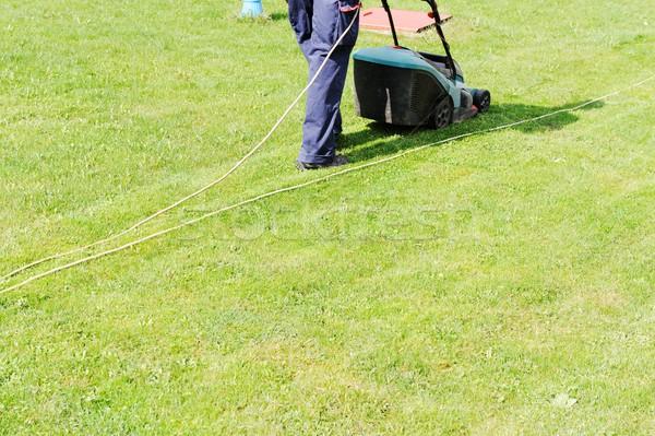男 芝刈り機 緑の草 ワーカー 草 庭園 ストックフォト © zurijeta