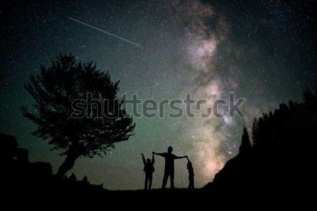 Laiteux façon arbres montagnes ciel forêt Photo stock © zurijeta