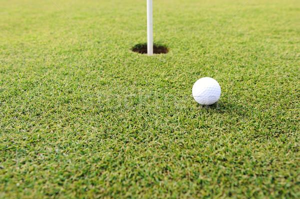 Golf ball at hole on grass field Stock photo © zurijeta