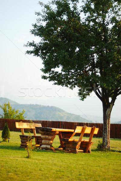 Beatiful place, green meadow and bench on Stock photo © zurijeta