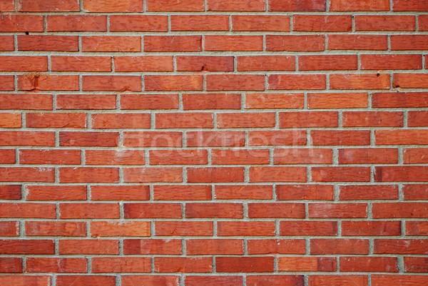 Standard brick pattern, shape, background Stock photo © zurijeta