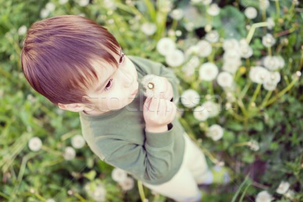 Bonitinho criança leão diversão flor Foto stock © zurijeta