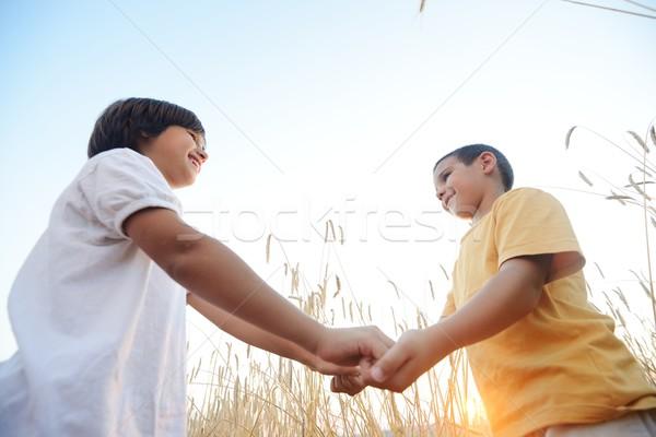 Stok fotoğraf: Iki · kardeşler · çayır · küçük · erkek