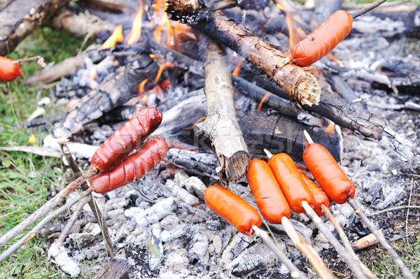 Piquenique natureza salsicha grama madeira carne Foto stock © zurijeta