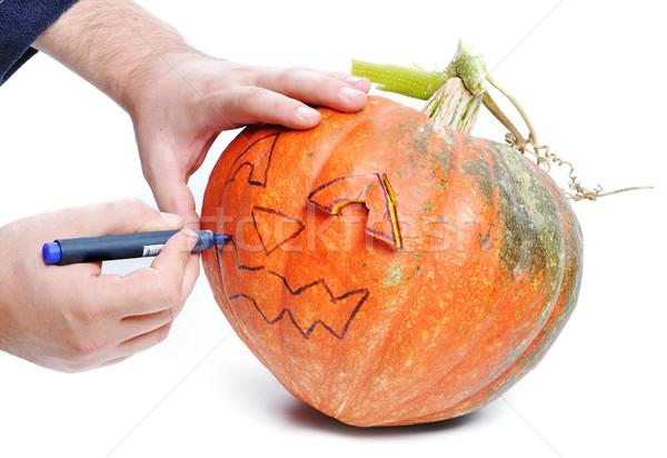 Halloween pumpkin Stock photo © zurijeta