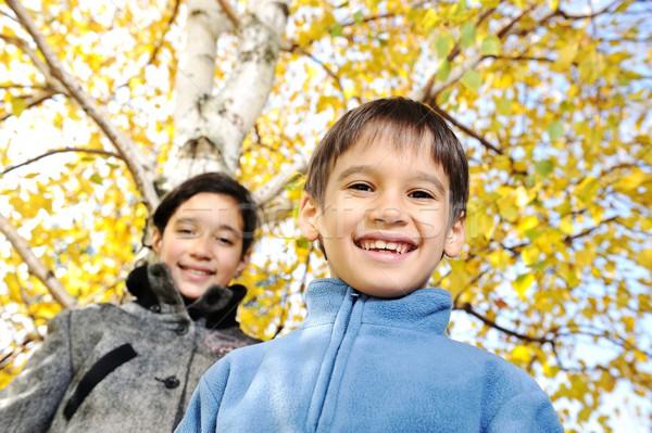 Boldog gyerek őszi levelek park kéz mosoly Stock fotó © zurijeta
