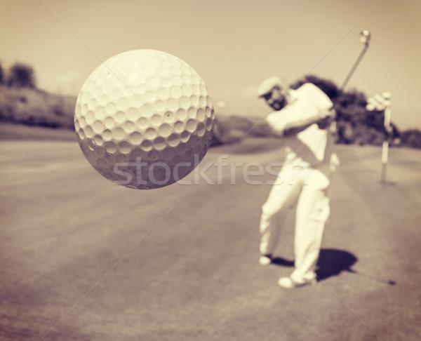 Jogador de golfe clube natureza verão verde vintage Foto stock © zurijeta