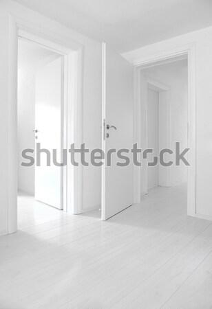 Empty home interior doors and floor Stock photo © zurijeta