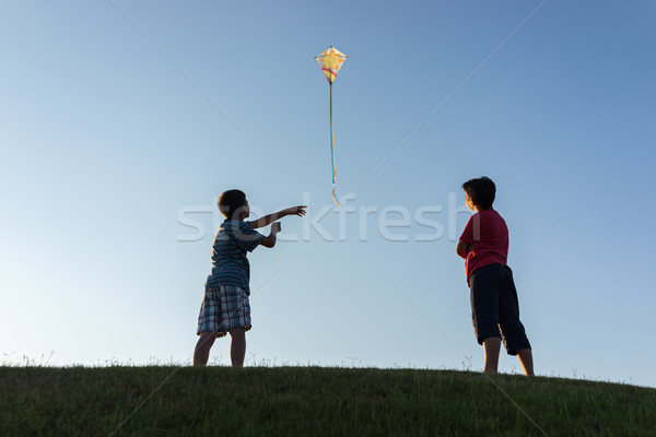 Lopen Kite silhouet hemel voorjaar golf Stockfoto © zurijeta