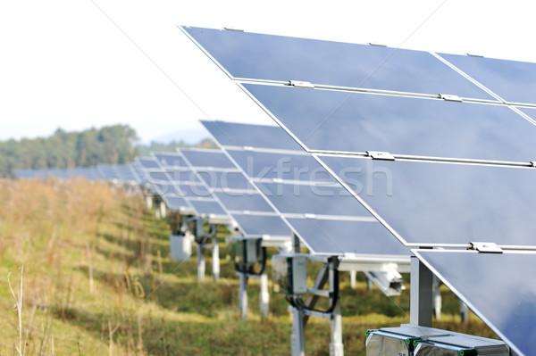 Painéis solares grama floresta sol tecnologia campo Foto stock © zurijeta