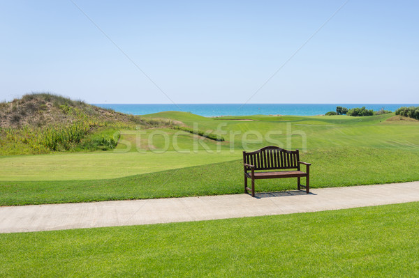 Perfect grass meadow Stock photo © zurijeta