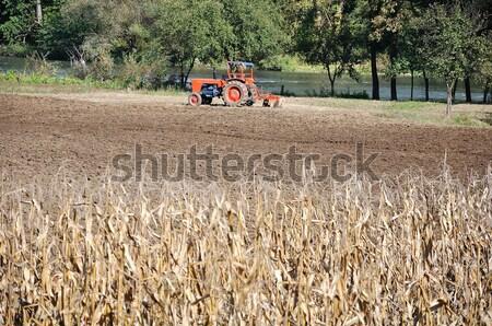 трактора области коров за работу технологий Сток-фото © zurijeta
