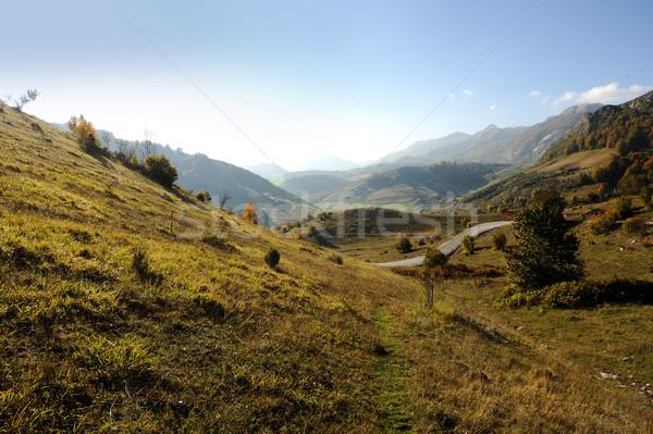 Mountain landscape, morning background Stock photo © zurijeta