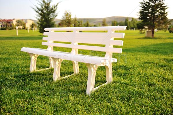 Witte stoel park geen mensen voorjaar weg Stockfoto © zurijeta