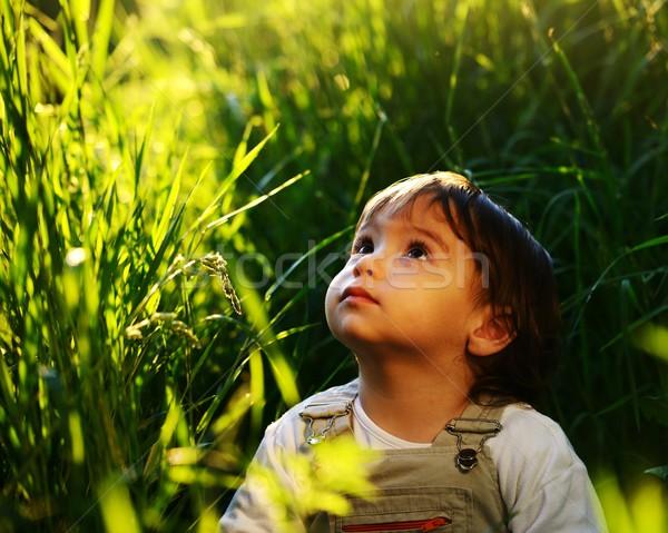 かわいい 愛らしい 赤ちゃん 子供 座って 美しい ストックフォト © zurijeta