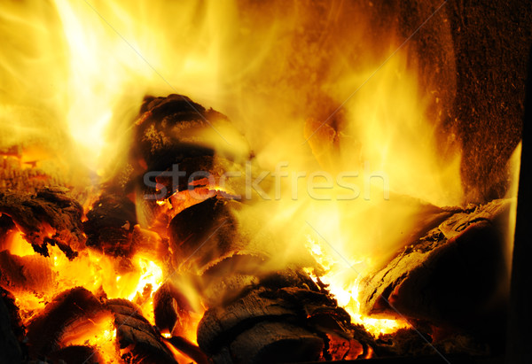 Powerful fire Stock photo © zurijeta