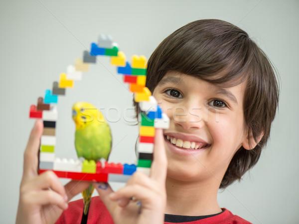 çocuk oynama evcil hayvan papağan eller kuş Stok fotoğraf © zurijeta