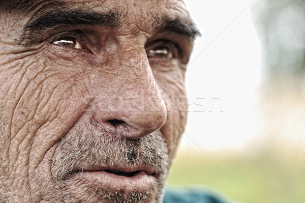 Old man with moustaches Stock photo © zurijeta