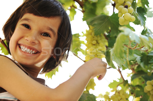 Smiling preteen boy with grapes on grapevine background Stock photo © zurijeta