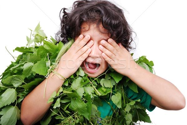 Little cute girl in leaves suit  Stock photo © zurijeta