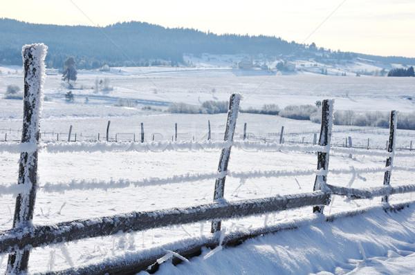 Countryside fence Stock photo © zurijeta