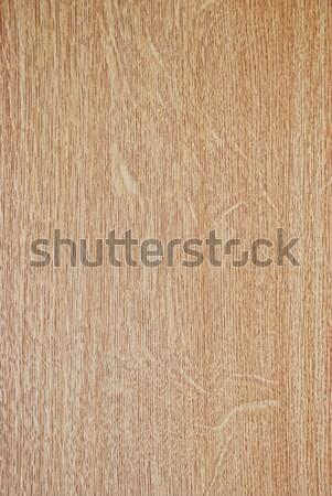 Interessant vorm patroon hout bos Stockfoto © zurijeta