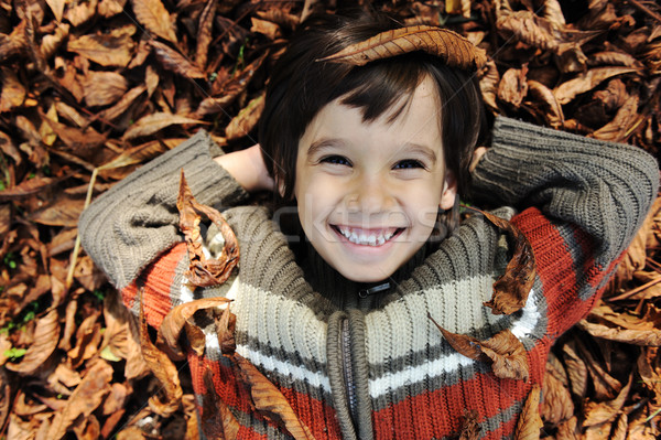Little happy positive kid laying on fall ground, yellow and red leaves around him Stock photo © zurijeta