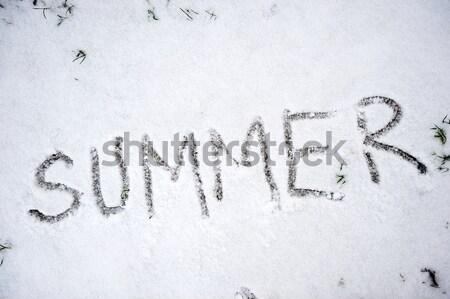 Snow texture II  Stock photo © zurijeta