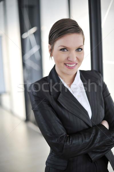 Documents idées réunion femme d'affaires Photo stock © zurijeta
