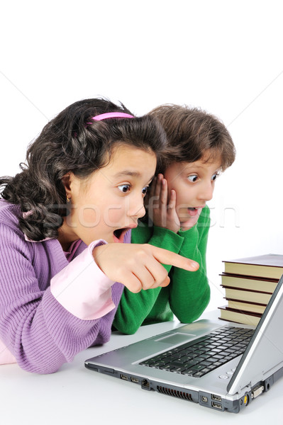 Two surprised girlfriends in front of laptop and stack of books Stock photo © zurijeta