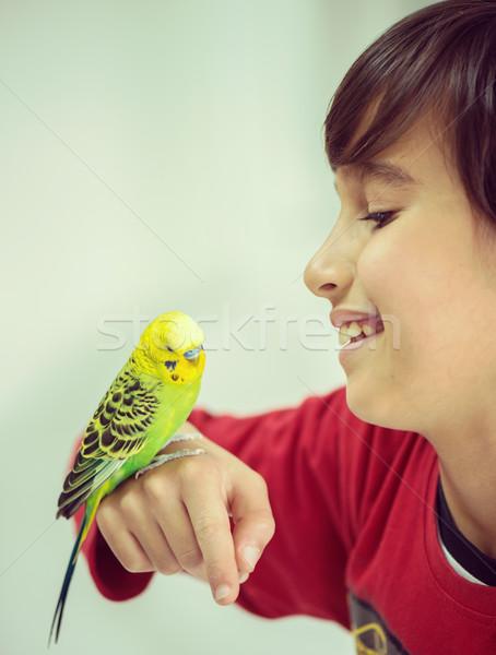 Gyerek játszik díszállat papagáj madár kék Stock fotó © zurijeta