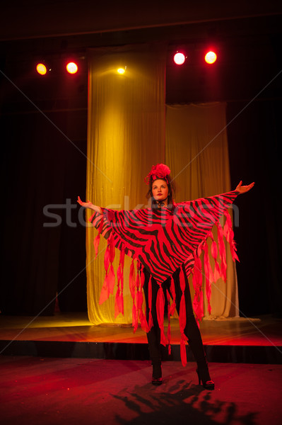 Act play performance in theater Stock photo © zurijeta