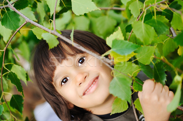 outdoor, happy faces between the leaves of the trees in forest or park Stock photo © zurijeta