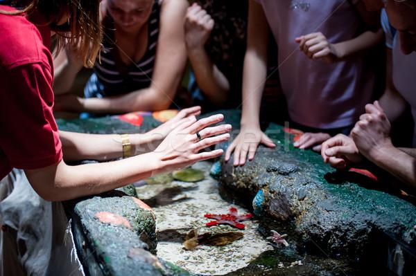 Enfants jouant aquarium eau famille fille Photo stock © zurijeta