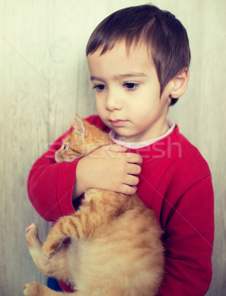 Stock photo: Happy little kid holding yellow kitty cat