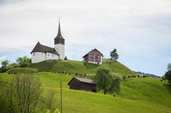 Suíça castelo casa edifício fruto montanha Foto stock © zurijeta
