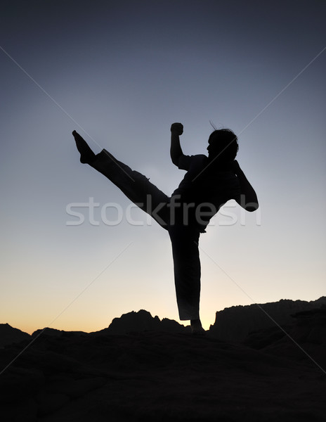 Karate fighter silhouette, young man doing an exercise of fighting sport, sunset, outdoor Stock photo © zurijeta