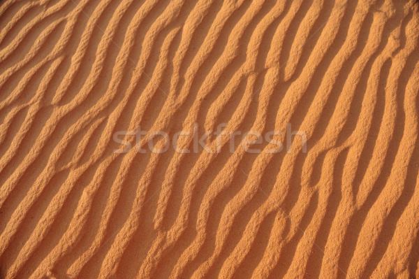 Mooie golf patronen duin woestijn ontwerp Stockfoto © zurijeta