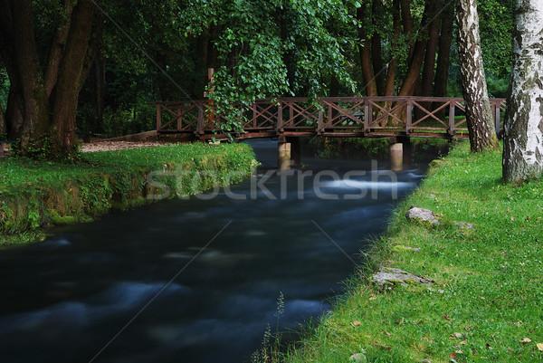 River and small bridge above Stock photo © zurijeta