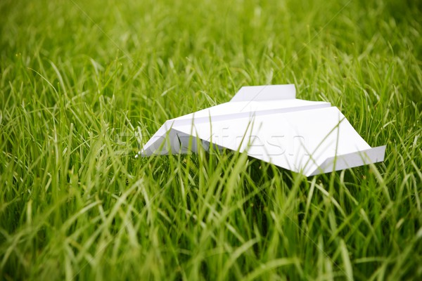 Flying paper airplane in grass Stock photo © zurijeta