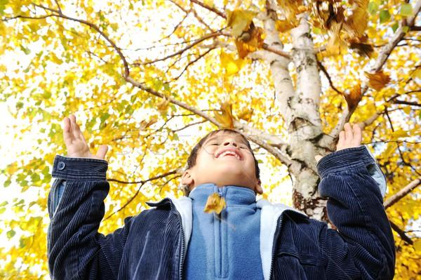 Boldog gyerek őszi levelek park gyermek narancs Stock fotó © zurijeta