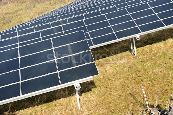 Alternatív energia fotovoltaikus napelemek fű erdő Stock fotó © zurijeta